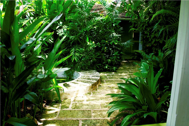 UR Plants1